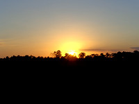 Disney Wilderness Preserve Sunset