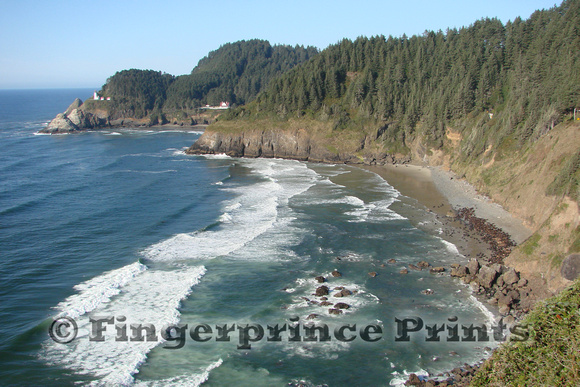 Heceta Head Lighthouse and Sea Lions